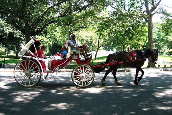 nyc_carriage_ride