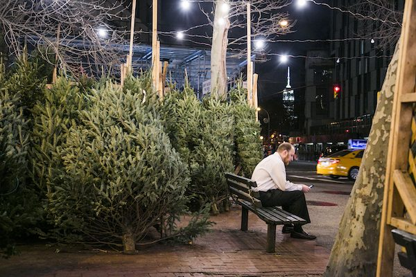 Christmas trees for sale at the SoHo Trees pop-up holiday shop at SoHo Square in Manhattan, New York, on Dec. 15, 2015. (Samira Bouaou/Epoch Times)