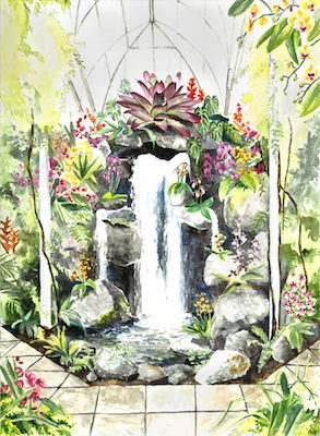 OrchidShowWaterfall